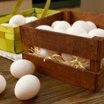 Как хранить куриные яйца правильно