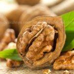 как хранить орехи очищенные в домашних