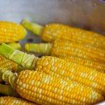 Как варить кукурузу так, чтоб